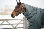 Kentucky Turnout Rug All Weather 160gr grau/olive wasserdicht